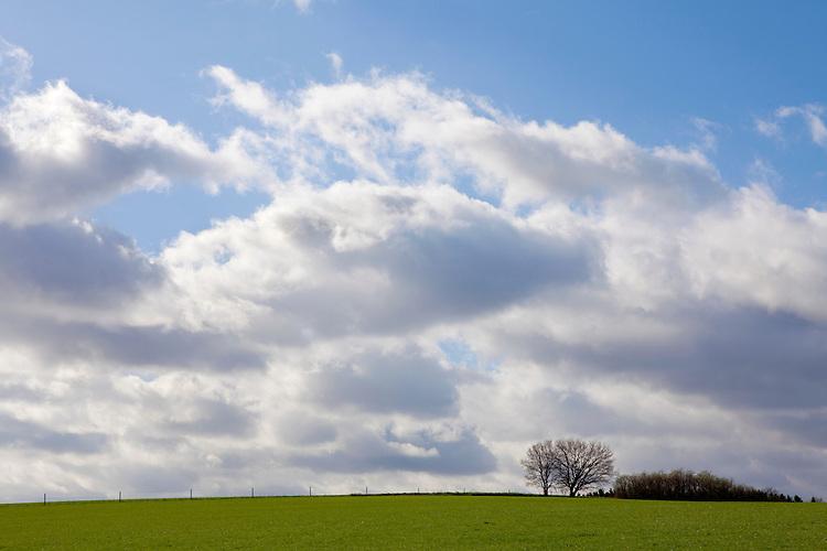 Europa, DEU, Deutschland, Nordrhein Westfalen, NRW, Rheinland, Niederrhein, Toenisberg, Schaephuysener Hoehen, Himmel, Wolken, Baeume, Kategorien und Themen, Natur, Umwelt, Landschaft, Jahreszeiten, Stimmungen, Landschaftsfotografie, Landschaften, Landschaftsphoto, Landschaftsphotographie, Wetter, Himmel, Wolken, Wolkenkunde, Wetterbeobachtung, Wetterelemente, Wetterlage, Wetterkunde, Witterung, Witterungsbedingungen, Wettererscheinungen, Meteorologie, Bauernregeln, Wettervorhersage, Wolkenfotografie, Wetterphaenomene, Wolkenklassifikation, Wolkenbilder, Wolkenfoto....[Fuer die Nutzung gelten die jeweils gueltigen Allgemeinen Liefer-und Geschaeftsbedingungen. Nutzung nur gegen Verwendungsmeldung und Nachweis. Download der AGB unter http://www.image-box.com oder werden auf Anfrage zugesendet. Freigabe ist vorher erforderlich. Jede Nutzung des Fotos ist honorarpflichtig gemaess derzeit gueltiger MFM Liste - Kontakt, Uwe Schmid-Fotografie, Duisburg, Tel. (+49).2065.677997, ..archiv@image-box.com, www.image-box.com]