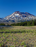 ORCAC_022 - USA, Oregon, Deschutes National Forest, Three Sisters Wilderness, South Sister towers above bunch grass and conifers at Wickiup Plain.
