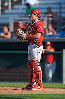Williamsport Crosscutters catcher Brett Barbier (8) during a game against the Auburn Doubledays on June 26, 2016 at Falcon Park in Auburn, New York.  Auburn defeated Williamsport 3-1.  (Mike Janes/Four Seam Images)