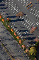 Parking lot with maple trees, aerial view, Arlington, MA
