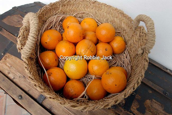 Oranges in a basket in Seville,Spain