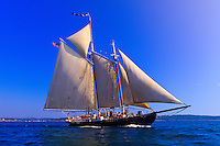 Schooner Nathaniel Bowditch sailing on Penobscot Bay, Maine USA
