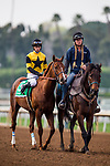 ARCADIA, CA - FEBRUARY 10: Kanthaka and Flavien Prat at the San Vicente Stakes at Santa Anita Park on February 10, 2018 in Arcadia, California. (Photo by: Alex Evers/Eclipse Sportswire/Getty Images)