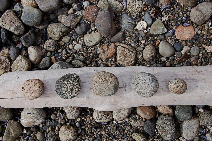 Five beach rocks rubbed smooth by the tides and arranged on a log on the Sunshine Coast of British Columbia,  Canada.