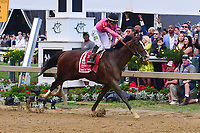 Baltimore, MD - May 18, 2019: Jockey Tyler Gaffalione and War of Will come from behind to win the 144th running of the Preakness at the Pimlico Race Course in Baltimore, MD May 18, 2019.  (Photo by Don Baxter/Media Images International)