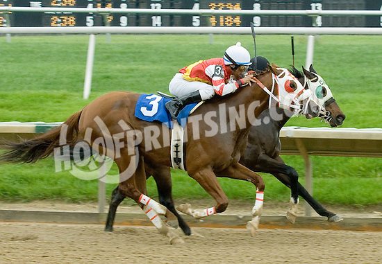 Yield Spread winning at Delaware Park on 5/3/10