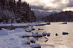 Lake Wenatchee State Park on a March morning with heavy wet snow.
