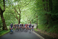 peloton in the forests around the Gileppe dam<br /> <br /> stage 4: Hotel Verviers - La Gileppe (Jalhay/BEL) 186km <br /> 30th Ster ZLM Toer 2016