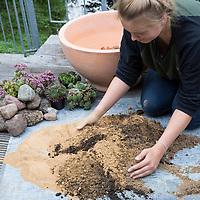 Wildbienen-Nisthilfe-Mini-Sandarium. Eine Pflanzschale wird aus einem Substrat aus Sand, Lehm und Gartenerde zu gleichen Anteilen gefüllt. Eine Schicht aus Tonscherben am Grund der Schale dient als Dränageschicht. Große Teile der Oberfläche bleiben unbedeckt und dienen im Boden lebenden Wildbienen als Nistplatz. Pflanzschale, Blumenschale wird spärlich bepflanzt und mit Steinen dekoriert. Wildbienen-Nisthilfen, Wildbienen-Nisthilfe selbermachen, selber machen, Wildbienenhotel, Insektenhotel, Wildbienen-Hotel, Insekten-Hotel