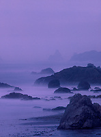 769550255v during a clearing pacific ocean storm fog and mist at sunset create an eerie calm over the sea stacks lining harris beach state park along the southern coast of oregon