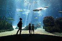 Big Aquarium in Lisbon