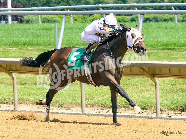 Kowboy Karma winning at Delaware Park on 7/19/17