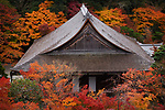 Roof with wooden shingles of a hall building at Nanzen-ji Buddhist temple complex in colorful autumn scenery, traditional Japanese architecture detail, Sakyo-ku, Kyoto, Japan 2017 Image © MaximImages, License at https://www.maximimages.com