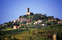 Il castello di Cigognola, paese in provincia di Pavia --- Castle of Cigognola, small village in the province of Pavia