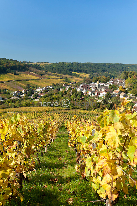 France, Côte d'Or (21), Route des Grands Crus, vignoble Hautes-Côtes de Beaune, Pernand-Vergelesses, le village et le vignoble en automne // France, Cote d'Or, Route des Grands Crus, Hautes Cote de Beaune vineyard, Pernand Vergelesses, village and vines in autumn