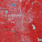 On May 20, 2013, central Oklahoma was devastated by a EF-5 tornado, the most severe on the enhanced Fujita scale. The Newcastle-Moore tornado killed at least 24 people, injured 377, and affected nearly 33,000 in some way. Early estimates suggest that more than $2 billion in damage was done to public and private property; at least 13,000 structures were destroyed or damaged. It was the deadliest tornado in the United States since an EF-5 event killed 158 people in Joplin, Missouri, in 2011. On June 2, 2013, the Advanced Spaceborne Thermal Emission and Reflection Radiometer (ASTER) on NASA's Terra satellite observed the scar of that tornado on the Oklahoma landscape. In this false-color image, infrared, red, and green wavelengths of light have been combined to better distinguish between water, vegetation, bare ground, and human developments. Water is blue. Buildings and paved surfaces are blue-gray. Vegetation is red. The tornado track appears as a beige stripe running west to east across this image; the color reveals the lack of vegetation in the wake of the storm. According to the National Weather Service, the tornado was on the ground for 39 minutes, ripping across 17 miles (27 kilometers) from 4.4 miles west of Newcastle to 4.8 miles east of Moore, Oklahoma. At its peak, the funnel cloud was 1.3 miles (2.1 kilometers) wide and wind speeds reached 210 miles (340 km) per hour. <br /> Credit: NASA Earth Observatory via CNP