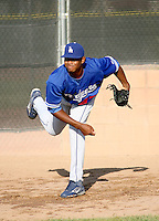 Beyker Fructuoso / Los Angeles Dodgers 2008 Instructional League..Photo by:  Bill Mitchell/Four Seam Images