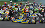 IAME European Open 2016