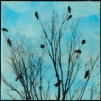 Family tree of crows silhouette against encaustic painting of turquoise blue sky.