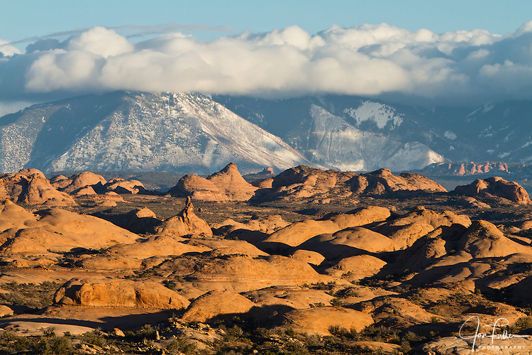 The Navajo sandstone Petrified Dunes in Arches National Park near Moab, Utah, USA with the snow-covered La Sal Mountains in the background.
