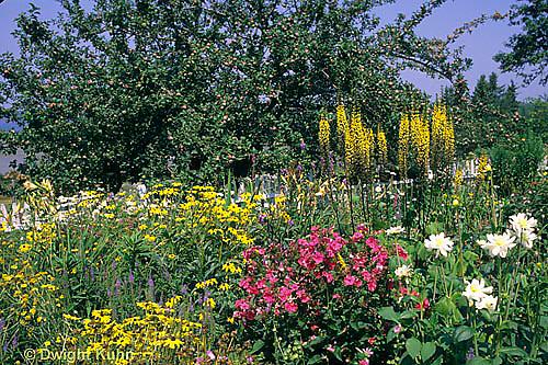 HB06-114x  Flower Garden
