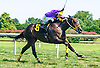 Yonder Ponder winning at Delaware Park on 8/27/16