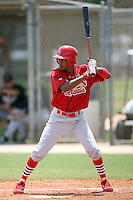 April 14, 2009:  Shortstop Yunior Castillo (34) of the St. Louis Cardinals extended spring training team during a game at Roger Dean Stadium Training Complex in Jupiter, FL.  Photo by:  Mike Janes/Four Seam Images