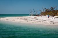 Cayo Costa, Fort Myers, Florida, USA. Photo by Debi Pittman Wilkey