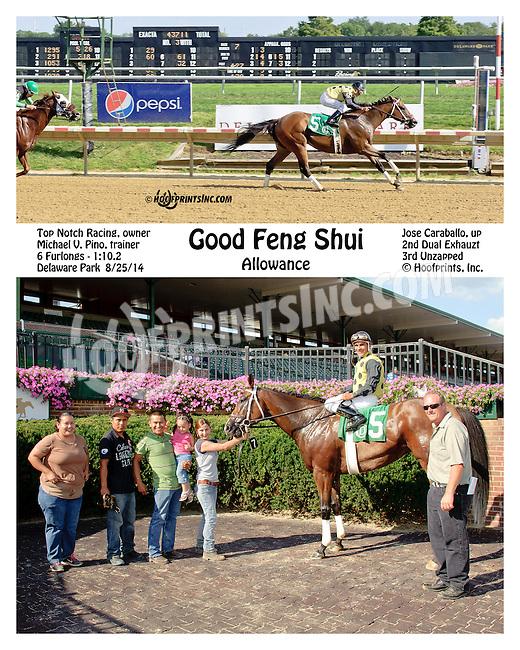 Good Feng Shui winning at Delaware Park on 8/25/14