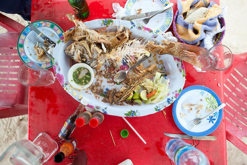 Fried fresh fish. On holiday with the boys, Mahahual, Quintana Roo, Mexico