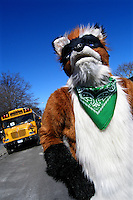Foxwell waits for the start of the St. Patrick's for All Parade in Sunnyside, Queens, New York.   Furries are a group of people who identify themselves not as being human but as a walking, talking animal.  For some the lifestyle is complete, animal traits reach into every aspect of life from mundane trips to a grocery store to sexual fantasies.  For others, involvement in the furry fandom is limited to public performances and meet-and-greets.