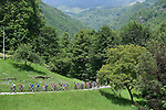 The peleton in action during Stage 19 of the 2018 Giro d'Italia, running 185km from Venaria Reale to Bardonecchia featuring the Cima Coppi of this Giro, the highest climb on the Colle delle Finestre with its gravel roads, before finishing on the final climb of the Jafferau, Italy. 25th May 2018.<br /> Picture: LaPresse/Fabio Ferrari | Cyclefile<br /> <br /> <br /> All photos usage must carry mandatory copyright credit (&copy; Cyclefile | LaPresse/Fabio Ferrari)