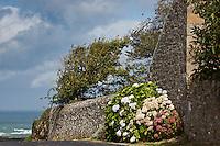 Europe/France/Normandie/Basse-Normandie/50/Presqu'île du Cotentin/Pointe de La Hague/Saint-Germain-des-Vaux: Village fleuri //   France, Manche, Cotentin, La Hague, Saint Germain des Vaux, flowery village