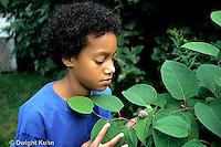 1Y08-101z   Land Snail - girl finding snail on leaf