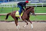 LOUISVILLE, KENTUCKY - APRIL 28: Code of Honor, trained by Claude McGaughey III, exercises in preparation for the Kentucky Derby at Churchill Downs in Louisville, Kentucky on April 28, 2019. Scott Serio/Eclipse Sportswire/CSM