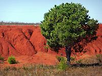 AGO 2012, Puglia, Salento, Cava di Bauxite di Otranto utilizzata per l'estrazione del minerale dal 1940 al 1976.AUG 2012, Apulia, Salento, Otranto bauxite quarry used for the extraction of ore from 1940 to 1976