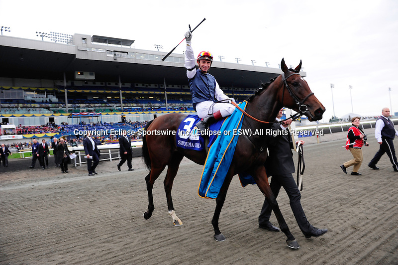 Siyouma (IRE)(3) with Jockey Gerald Mosse aboard celebrates their victory in the E.P. Taylor Stakes (Grade 1) at Pattison Canadian International  in Toronto, Canada on October 14, 2012.
