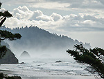 Wind Fog Rocks, Oregon Coast