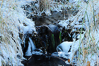 Water cascading down a small spring fed brook framed by winter ice crystals.
