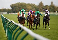 2012 Horse Racing