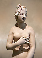 2nd century AD Roman marble sculpture of Aphrodite (Venus), 'Dresden Capitoline Type, copied from a Hellanistic Greek original,  inv 6283 - Farnese Collection, Museum of Archaeology, Italy