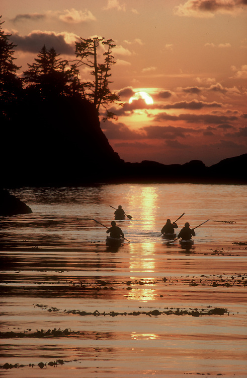 Sea kayakers, Barkley Sound, Broken Islands, Pacific Rim National Park, west coast of Vancouver Island, British Columbia, Canada, sunset, Pacific Ocean,..