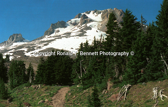 "Mount Hood timberline Pacific Northwest Oregon, Mount Hood Cascade Volcanic Arc of Northern Oregon, Mount Hood, Volcanic Mountain, cascade range, glaciers, Timberline Lodge, Palmer Glacier, Mount Hood Meadows, Mount Hood National Forest, wilderness areas, Oregon Territory 1848, Salem, February 14 1859, Willamette River, Willamette valley, Portland, Cascade Mountain Range, dense evergreen forest, high desert, Douglas firs, redwoods, prairies, meadows, deserts, scrublands, central Oregon, Mount Hood, Crate Lake, Haystack Rock, Malheur Butte, Lewis and Clark expedition, Fort Clatsop, Native American, the Bannock, Chasta, Chinook, Kalapuya, Klamath, Molalla, Nez Pece, Takelma, Umpqua, Fine art Photography and Stock Photography by Ronald T. Bennett Photography ©, FINE ART and  STOCK PHOTOGRAPHY FOR SALE,  CLICK ON  ""CART"" FOR PRICING.Oregon, USA, Pacific Ocean, Plains, woods, mountains, rain forest, desert, rain, Rose City, Portland, Lake Oswego, Pacific Northwest, Fine Art Photography by Ron Bennett, Fine Art, Fine Art photography, Art Photography, Copyright RonBennettPhotography.com © Fine Art Photography by Ron Bennett, Fine Art, Fine Art photography, Art Photography, Copyright RonBennettPhotography.com ©"