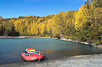 Fall colors highlight the green waters of the Kenai River.