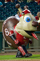 "Zooperstars character ""Snail Earnhardt Jr."" entertains the fans between innings of the South Atlantic League game between the Kannapolis Intimidators and the Lakewood BlueClaws at FirstEnergy Park on August 8, 2012 in Lakewood, New Jersey.  The BlueClaws defeated the Intimidators 5-0.  (Brian Westerholt/Four Seam Images)"