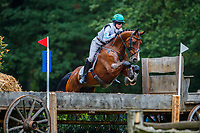 AUS-Catherine Burrell rides Duke during the Cross Country for the CCIO4*-L FEI Nations Cup Eventing. 2019 Military Boekelo-Enschede International Horse Trials. Saturday 12 October. Copyright Photo: Libby Law Photography