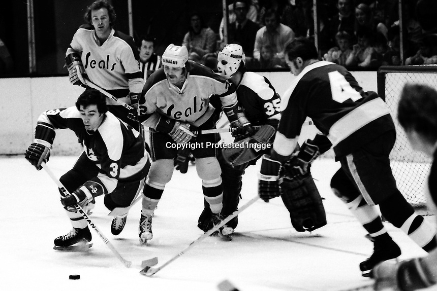 California Golden Seals vs Minnesota North Stars 1973 action: North Stars Fred Barrett, Chris Ahrens, and goalie Fern Rivard..Seals Walt McKechnie and Joey Johnston. (photo by Ron Riesterer)