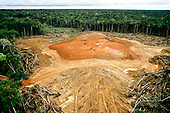 Amazonas State, Brazil. Rainforest clearance using three bulldozers. Oil exploration - Caraoari oilfield; preparing site for test drilling.