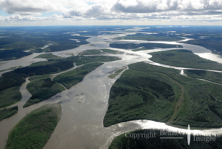 The Yukon River's twisting channels as seen north of Fairbanks, Alaska.