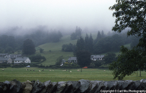 Stone Fences In Scotland